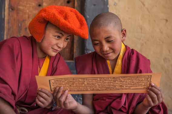 Two young monks wearing maroon robes and a orange headgear characteristic of the Drukpa sect of Buddhism study ancient Tibetan Buddhist scriptures at the monk school in the remote and isolated Phuktal or Phugtal monastery or gompa in the offbeat Zanskar valley