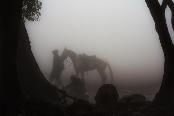 Horses walk through a thick mist in Mahabaleshwar, the most famous hill station in Maharashtra, India.