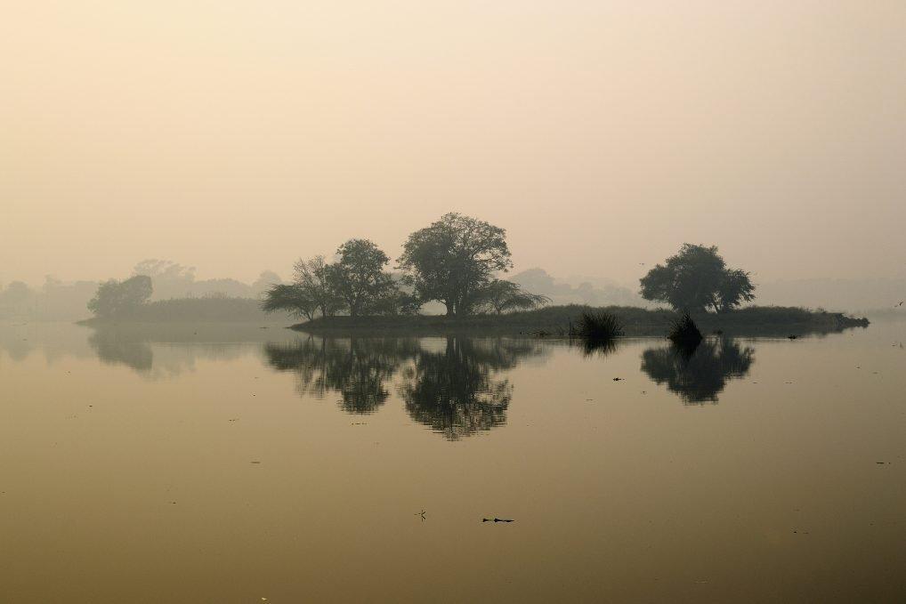 Okhla bird sanctuary in Delhi