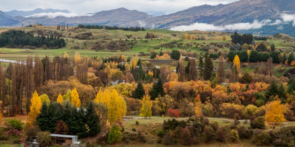 New Zealand a country that demands road trip