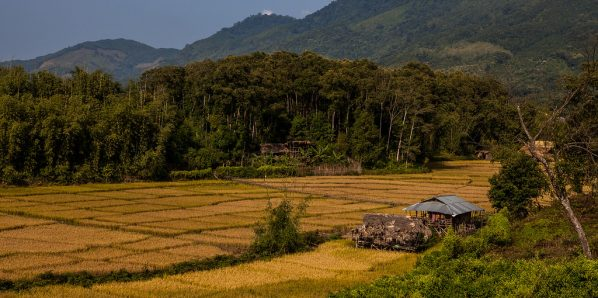 A typical landscape in Basar, Arunachal Pradesh
